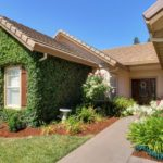 What Does Shaun Alston Have Over Other Elk Grove Realtors?